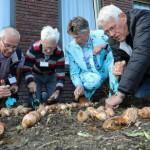 Bloembollen geplant in Alzheimertuin
