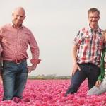 Open dag bloembollenbedrijven 't Zand