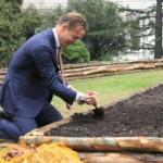 Ambassadeur De Bourbon de Parme plant de eerste koninklijke tulpen in de Vaticaanse Tuinen © KRO/Lidy Peters