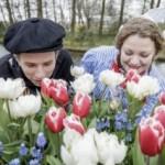 keukenhof viert oud hollands weekend