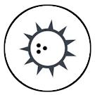 Plantlocatie: zon