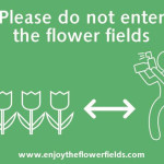 Enjoy the flowerfields