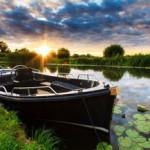 hillegomse-bollenboot