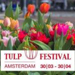 Tulp festival 2019