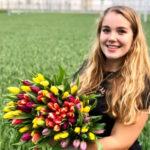 Tulpenprinses 2019 Flora Munster
