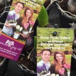 26-3-2019-opbrengst-aya-hyacint