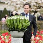 Premier Rutte doopt 'Don White' tulp