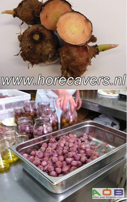 Muscari culinair