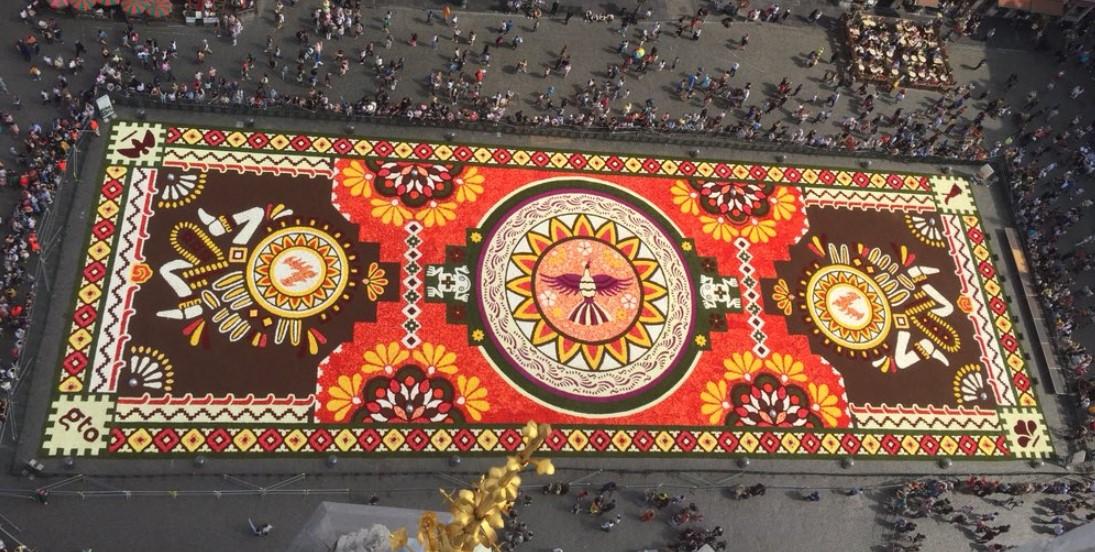 knolbegonia tapijt
