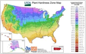 USA -USDA/APHIS